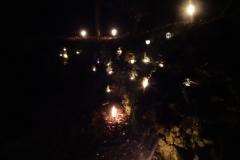 Waldweihnacht011